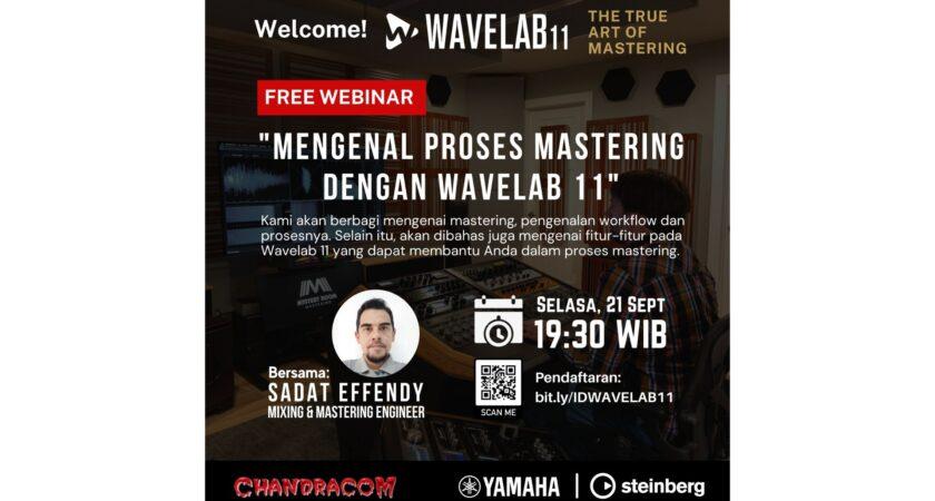 STEINBERG WaveLab 11 Webinar